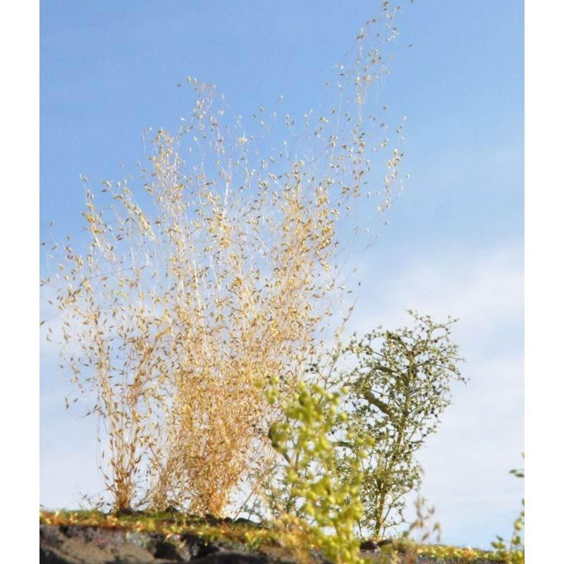 【新製品】彩葉 MS-025 穂の出た植物セット(3)